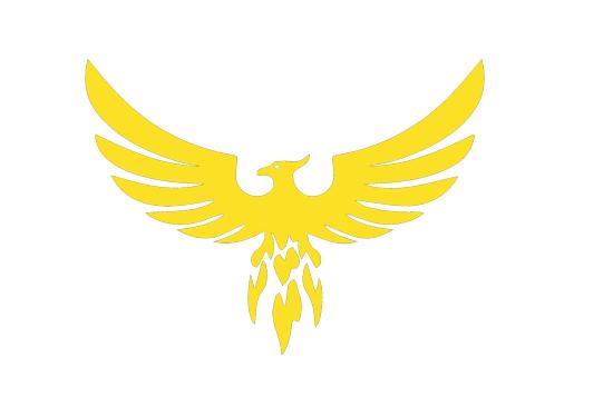 Team Blaze logo